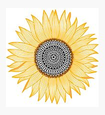 Golden Mandala Sunflower Photographic Print