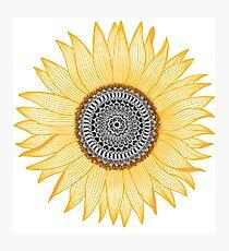 Goldene Mandala-Sonnenblume Fotodruck