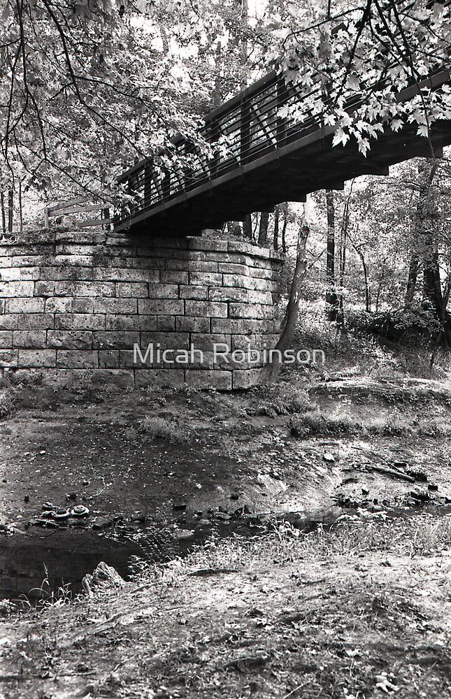 Bridge over Tradewater by Micah Robinson