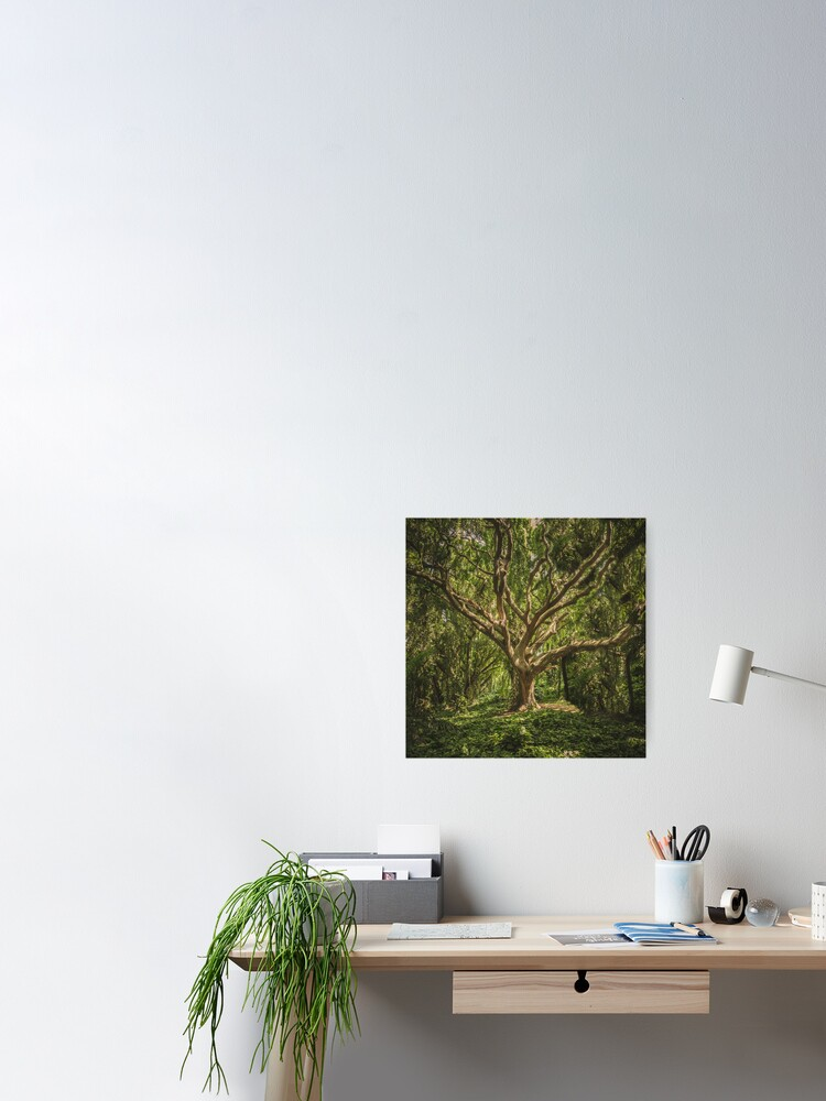 Alternate view of Spirits inside the wood Poster