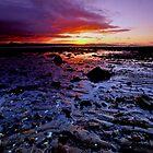 Longniddry Bents by Nik Watt