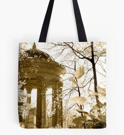 Autumn light Tote Bag