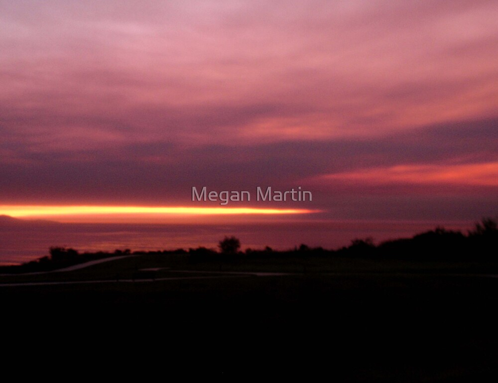 From the Fire by Megan Martin
