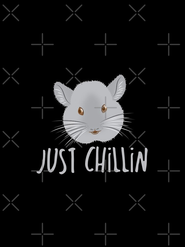 just CHILLIN (with cute grey chinchilla) by jazzydevil