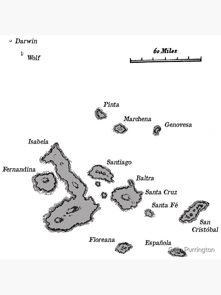 Galapagos Islands map | Poster on caribbean map, maldives map, central america map, genovesa island, luxembourg map, pinta island, honduras map, puerto ayora map, madagascar map, nameless island, bahamas map, africa map, puerto ayora, bay of fundy, atacama map, ha long bay, baltra island, isabela island, peru map, fernandina island, puerto baquerizo moreno, galapagos national park, tierra del fuego on map, charles darwin research station, netherlands antilles map, greater antilles map, iguazu falls, ethiopia map, cocos islands, strait of magellan map, europe map, dominican republic map, aleutian islands map, iceland islands map,