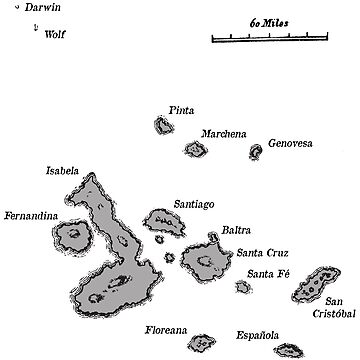 Galapagos Islands map by colinpurrington