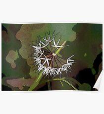 Windblown Seeds Poster
