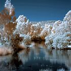 Westfield Herron Reserve IR with blue sky by BigAndRed