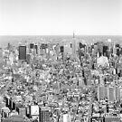 New York Skyline 1 by Flo Smith