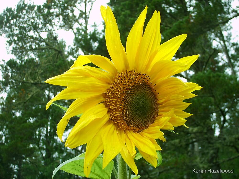 Yellow Personality by Karen Hazelwood