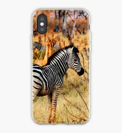 Zebras at sunset iPhone Case
