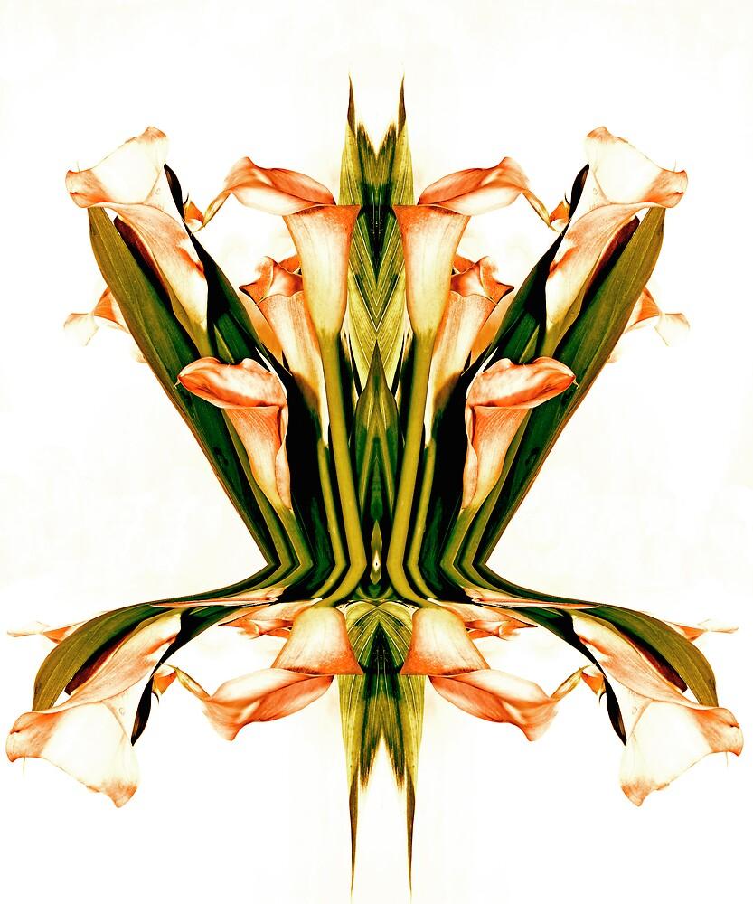 Simetry by LMarinho