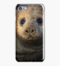 Donna Nook Grey Seal iPhone Case/Skin