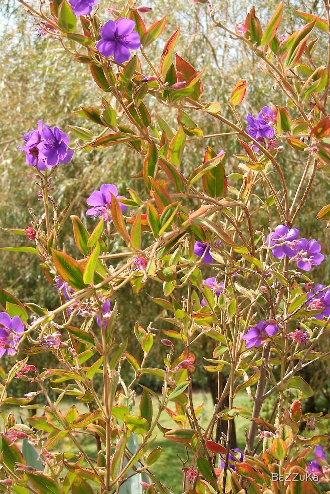 plant of my backyard by BaZZuKa