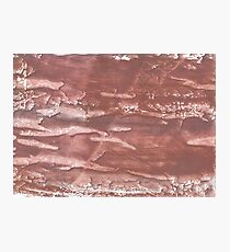 Brown abstract wash drawing painting Photographic Print