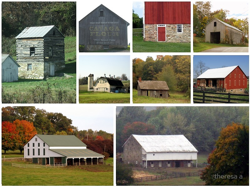 COLLAGE OF BARNS by theresa a