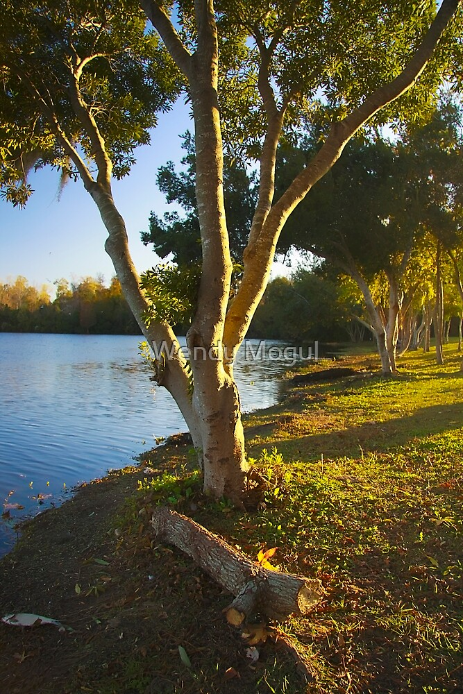 Sunset by the Lake by Wendy Mogul