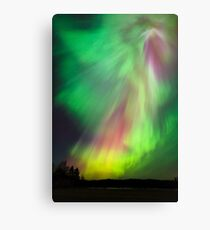 Big beautiful multicolored northern lights Canvas Print
