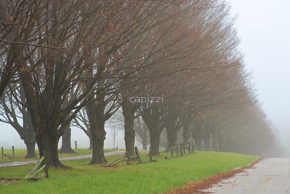 Vanishing Point by capizzi