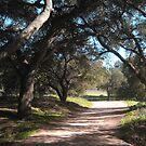 Malibu Creek State Park by adamgrell