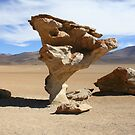 Arbol de Piedra by adamgrell