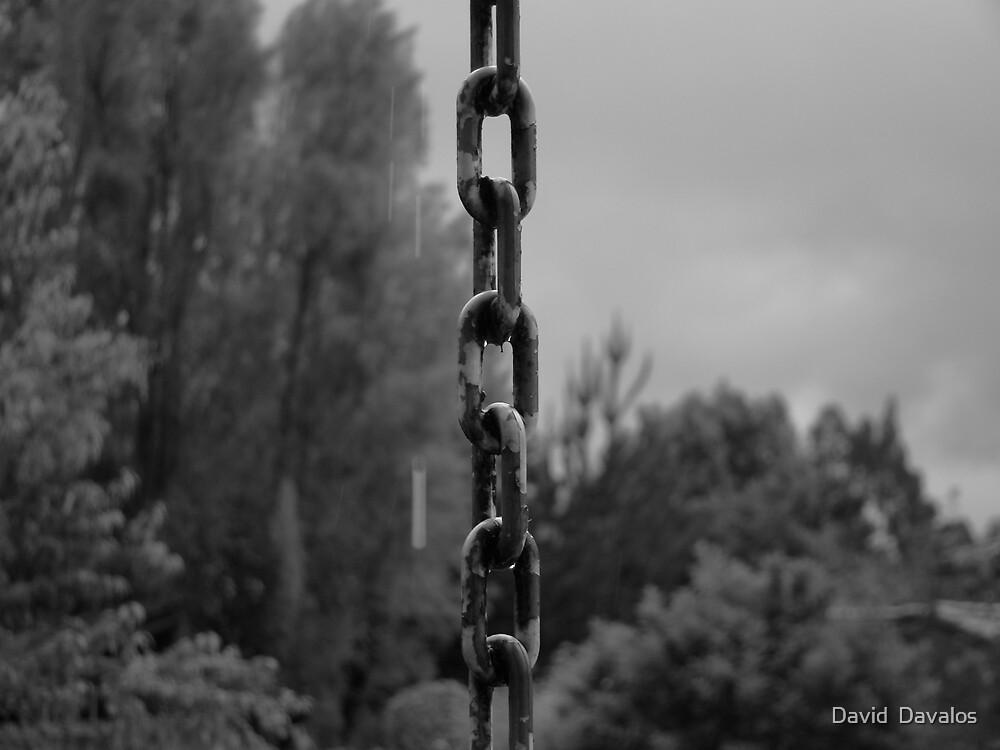 Dripping Chain by David  Davalos