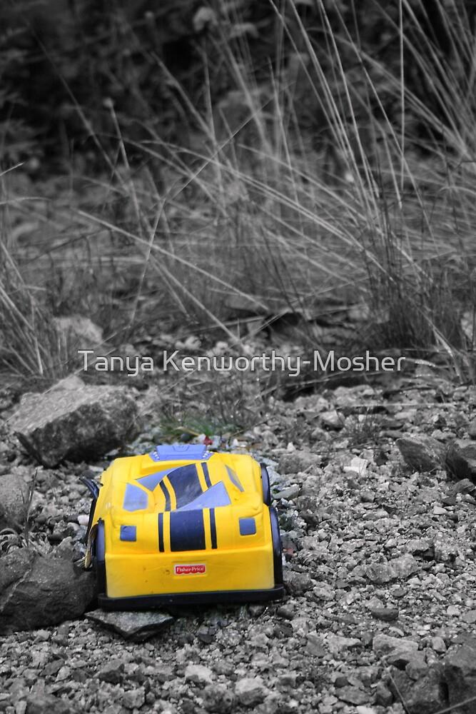Abandoned Car by Tanya Kenworthy-Mosher