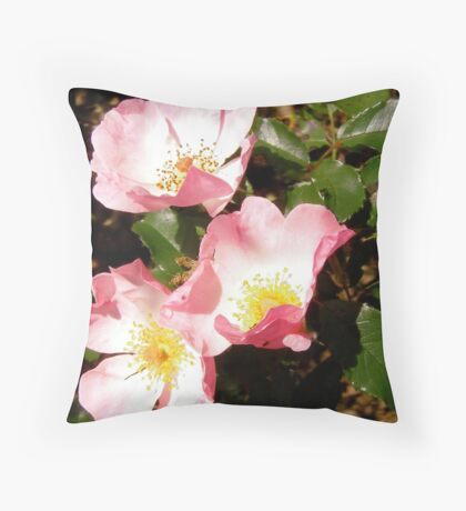 Governor General's roses 12 Throw Pillow