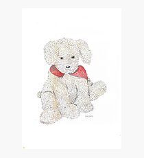 Lovable Rosie Dog Photographic Print