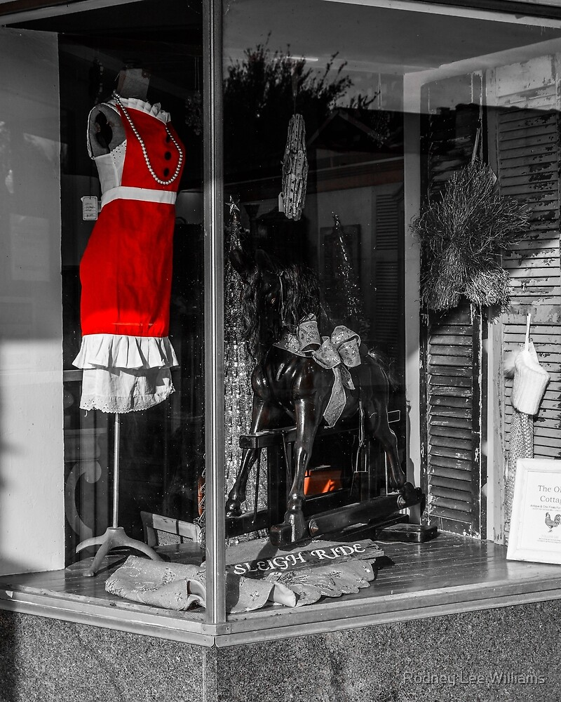 Red Dress in Window by Rodney Williams