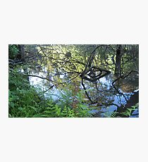 Sculptures in living water 2 Photographic Print