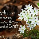 Faith by Hearing the Word of Christ ~ Romans 10:17 by Robin Clifton