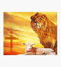 And the Lion Will lay Down With the Lamb... Photographic Print