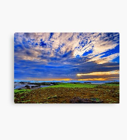 Spray Point Canvas Print