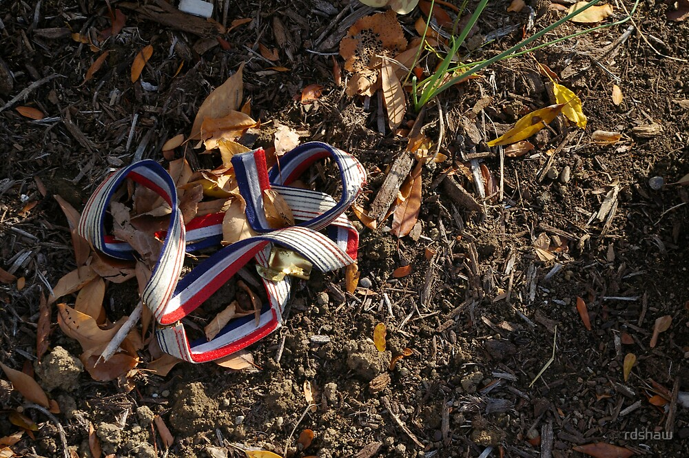 Red, White and Blue Ribbon by rdshaw