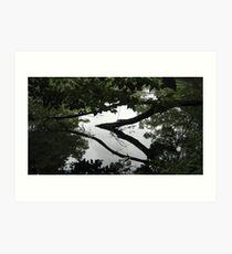 Sculptures in living water 9 Art Print