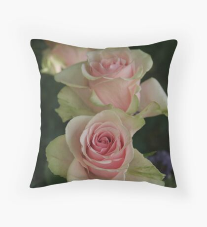 enduring charms Throw Pillow