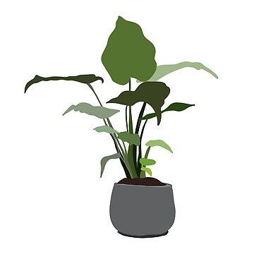houseplant in a grey pot by JulesTillman