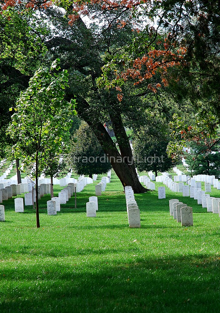 Arlington National Cemetery by Extraordinary Light