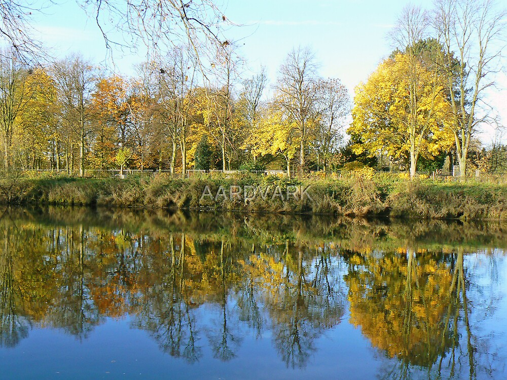 Rowntree Park In Autumn by AARDVARK