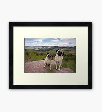 Is You Kidding Us Right Now? Framed Print