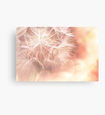 Pink Dandelion Macro Photography Canvas Print