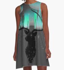 Nordlichter A-Linien Kleid