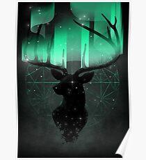 Northern Lights Poster