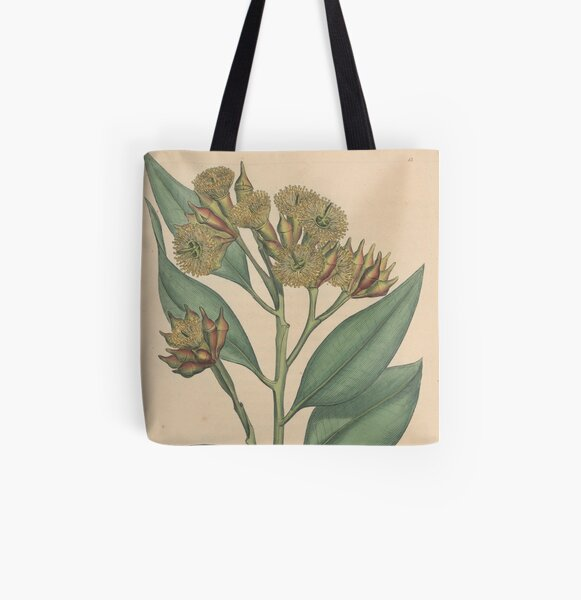 Botanical illustration: Eucalyptus robusta  – State Library Victoria All Over Print Tote Bag