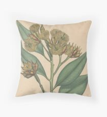 Botanical illustration: Eucalyptus robusta  – State Library Victoria Throw Pillow