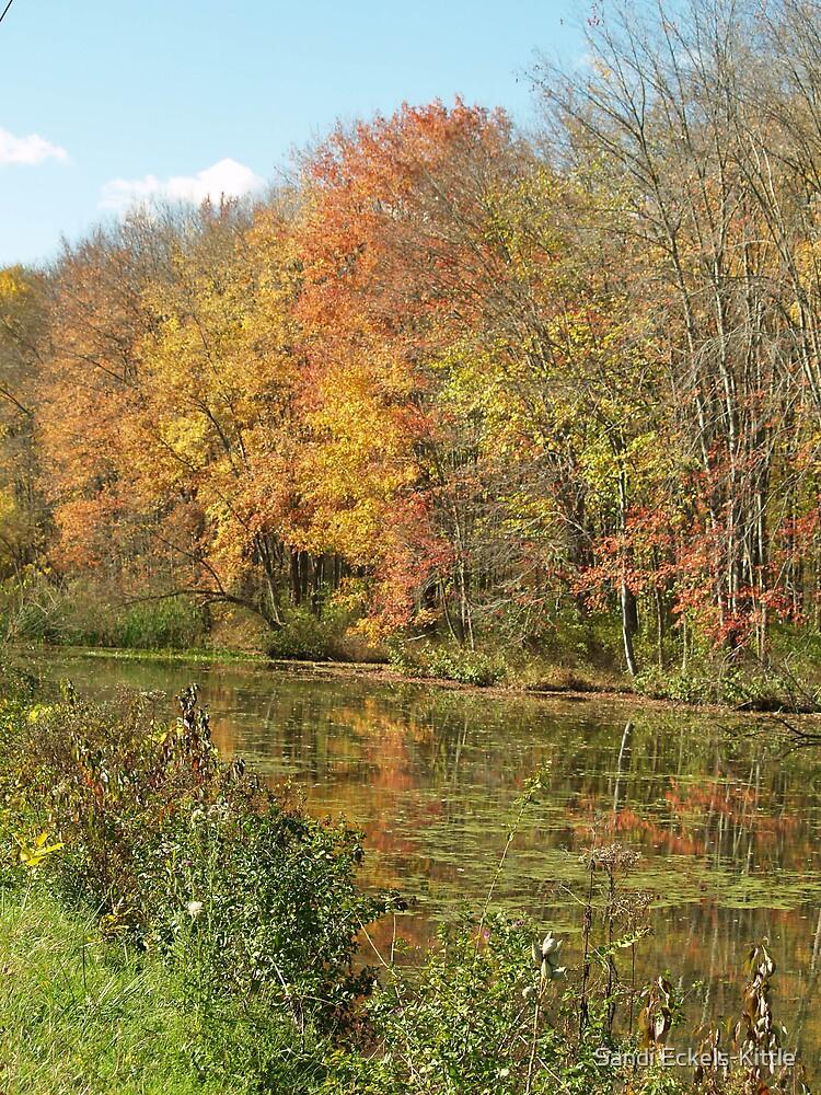 Fall beauty by Sandi Eckels-Kittle