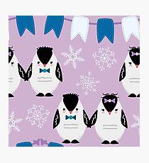 Penguin Couple, Winter Penguins, Snowflakes Winter Photographic Print