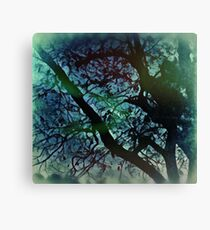 Once Upon A Nightmare  Canvas Print