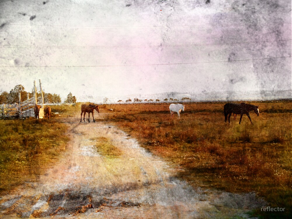 Out On The Plains by reflector